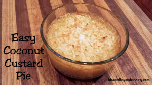 easy cocunut custard pie