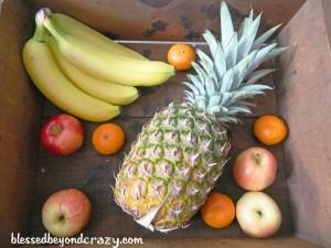snack fruit - Copy