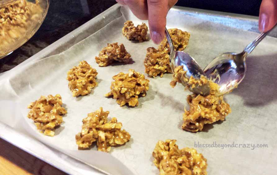 Drop by teaspoons onto waxed paper or onto a greased cookie sheet.