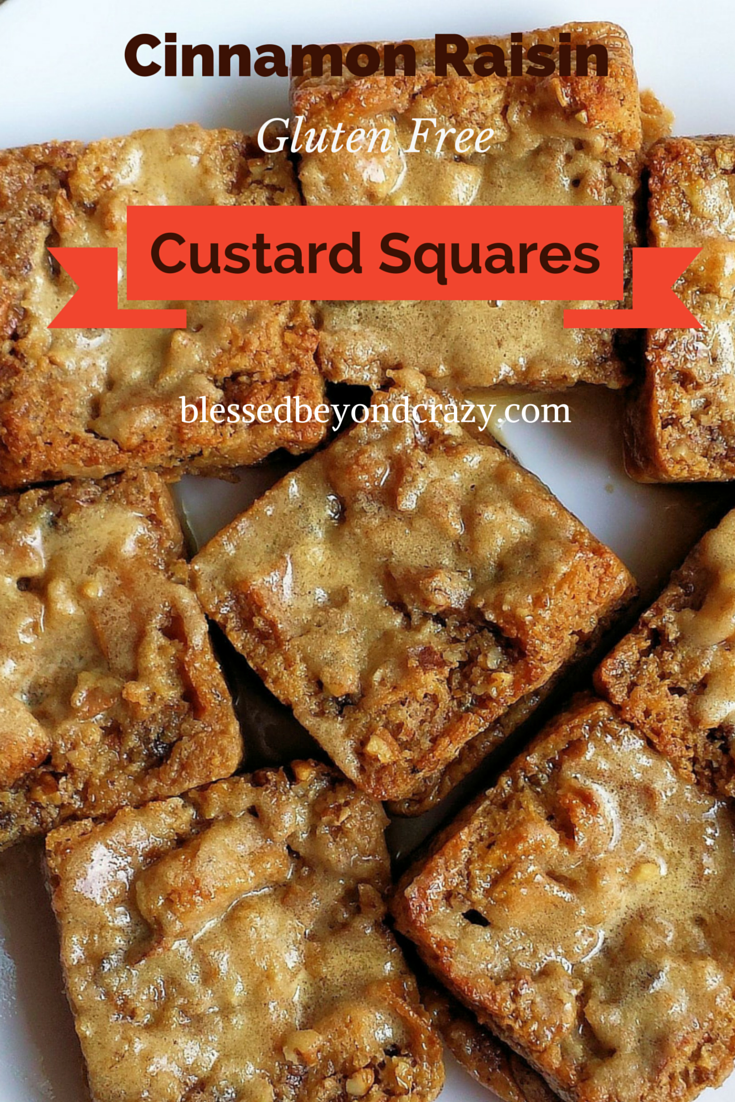 Cinnamon Raisin Custard Squares