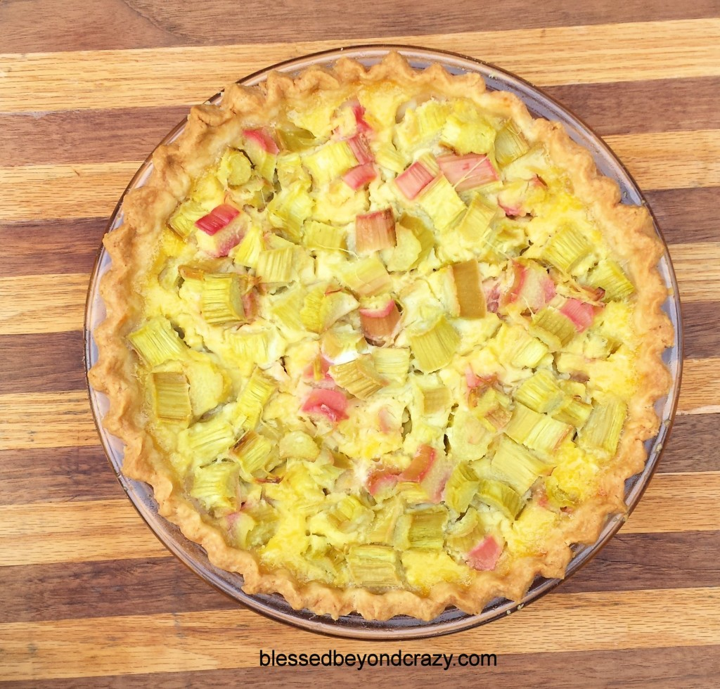 Rhubarb Pie 2