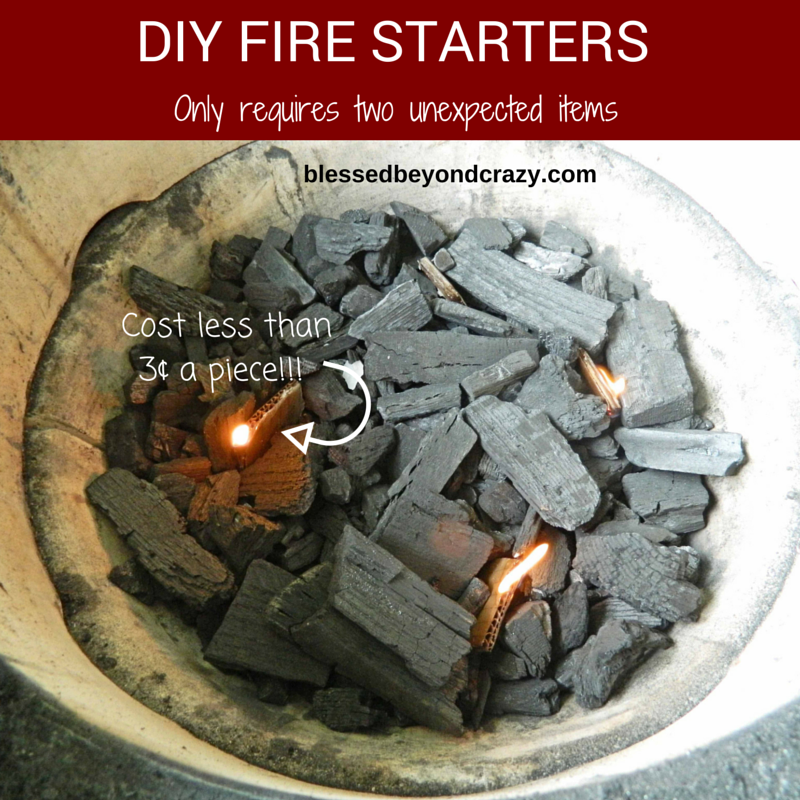 Diy Fire Starters Only Requires Two Unexpected Items