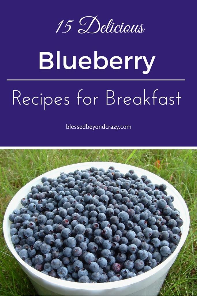 Blueberry Breakfast Recipes 3