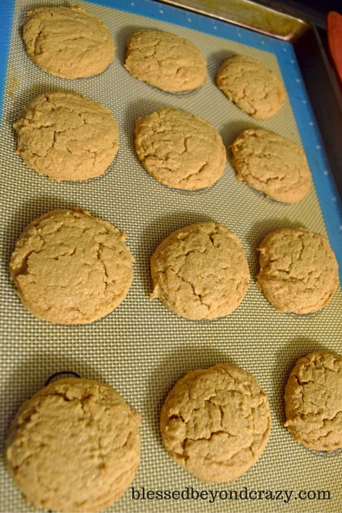 pb cookie (1)
