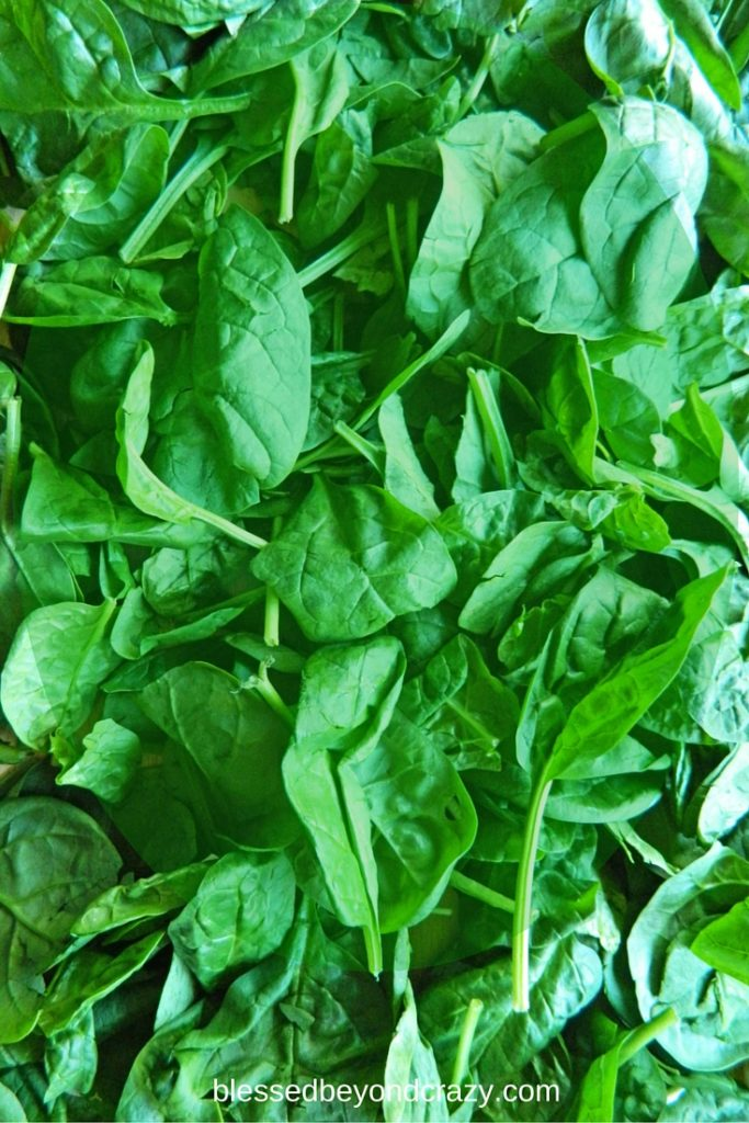 10Sneaky Ways to add Spinach into your