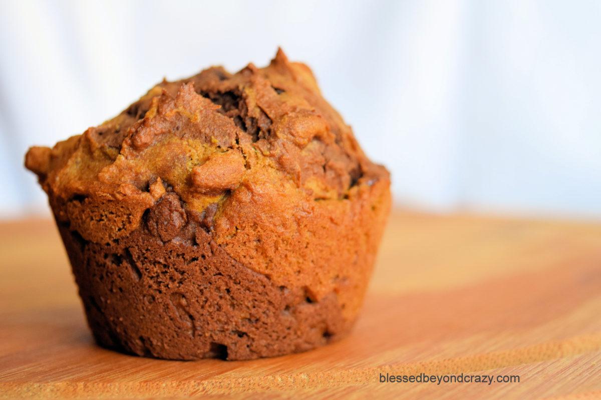 Side view of Bountiful Harvest Pumpkin Pecan Chocolate Muffins.