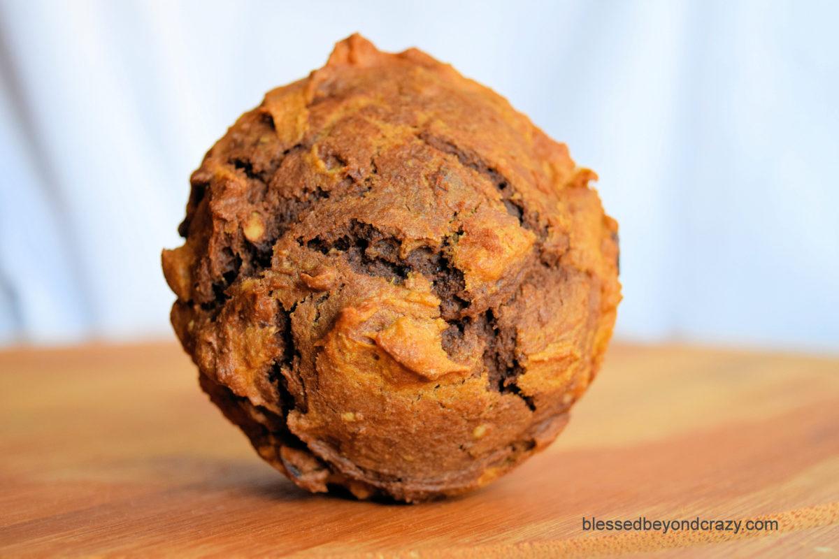 Top view of Bountiful Harvest Pumpkin Pecan Chocolate Muffins.