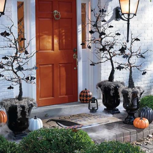 Trick-Or-Treat 1