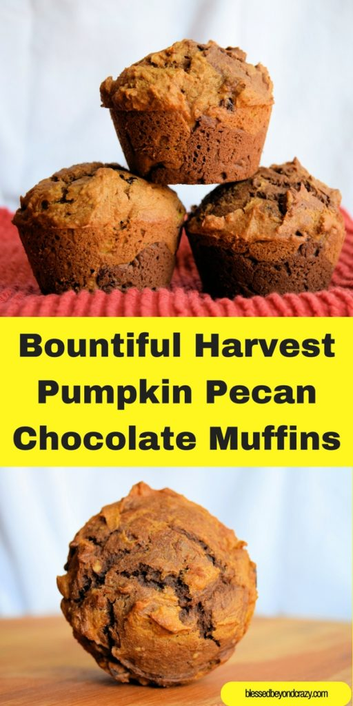 Bountiful Harvest Pumpkin Pecan Chocolate Muffins