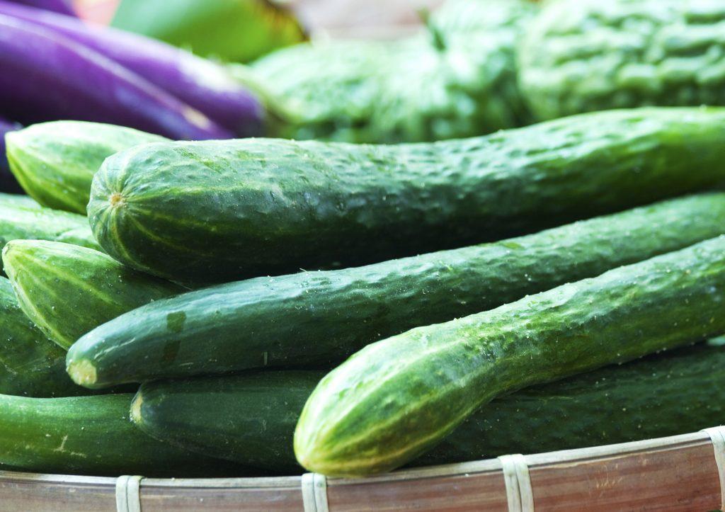 Easy Cucumber Appetizer
