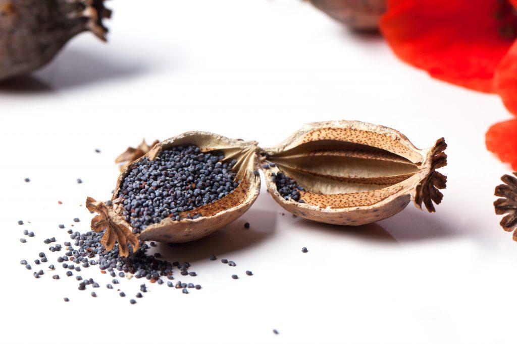 Easy Poppy Seed Dressing