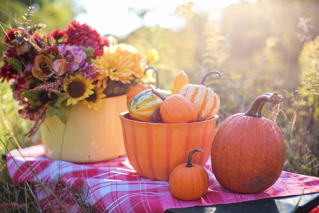 How to Host a Cozy Autumn Garden Party