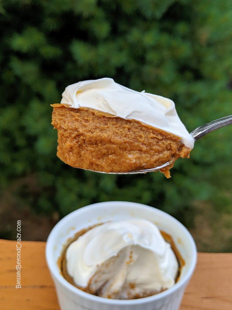 Delicious bite of Lite Maple Pumpkin Crustless Pie