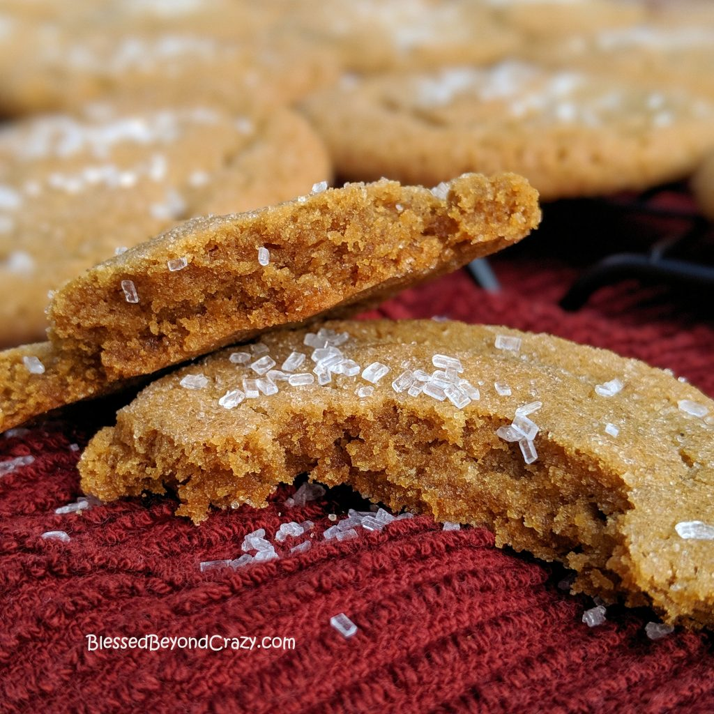 Inside view of Ginger Snap Cookies