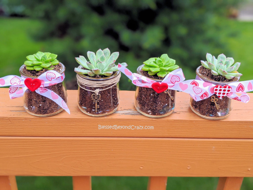 "Display of my granddaugther""s Repurposed Succulent Planters."