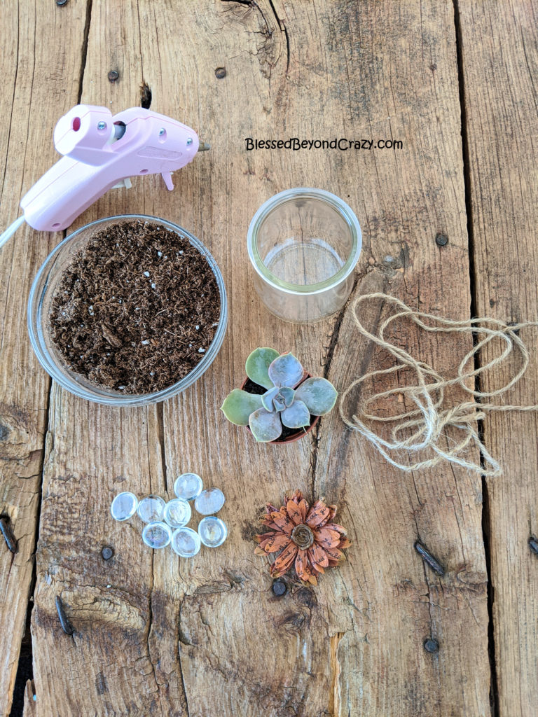 Supplies needed to make Repurposed Succulent Planters.