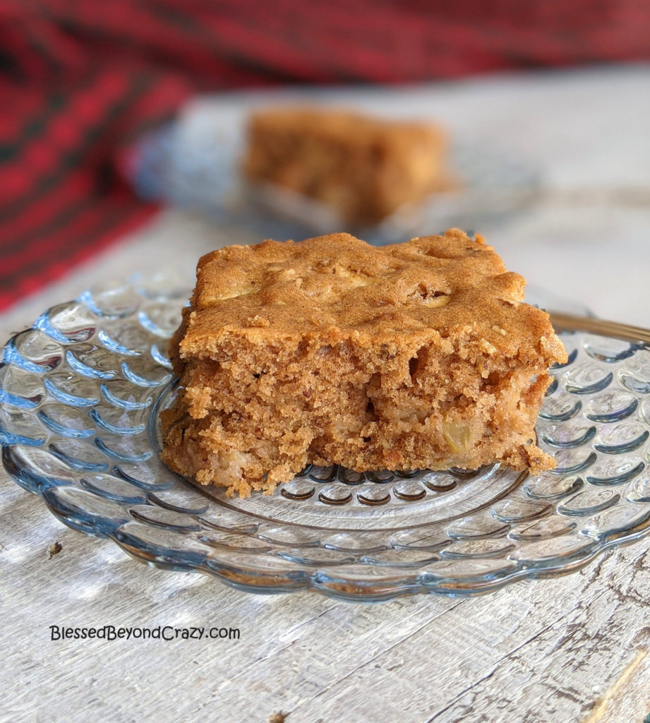 Close-up of serving of apple cake.